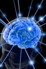 brain-763982