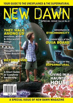CoverSPV8N2 New Dawn Special Issue Vol.8 No.2