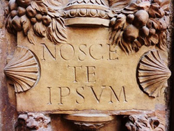 nosce te ipsum A Way to Live: The Path of Self Knowledge