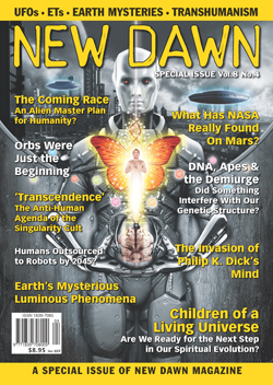 CoverV8N4 New Dawn Special Issue Vol.8 No.4