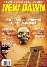 New Dawn 114
